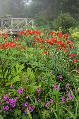 Garten Moorriem Elsfleth Moorriem Het Tuinpad Op In Nachbars Garten